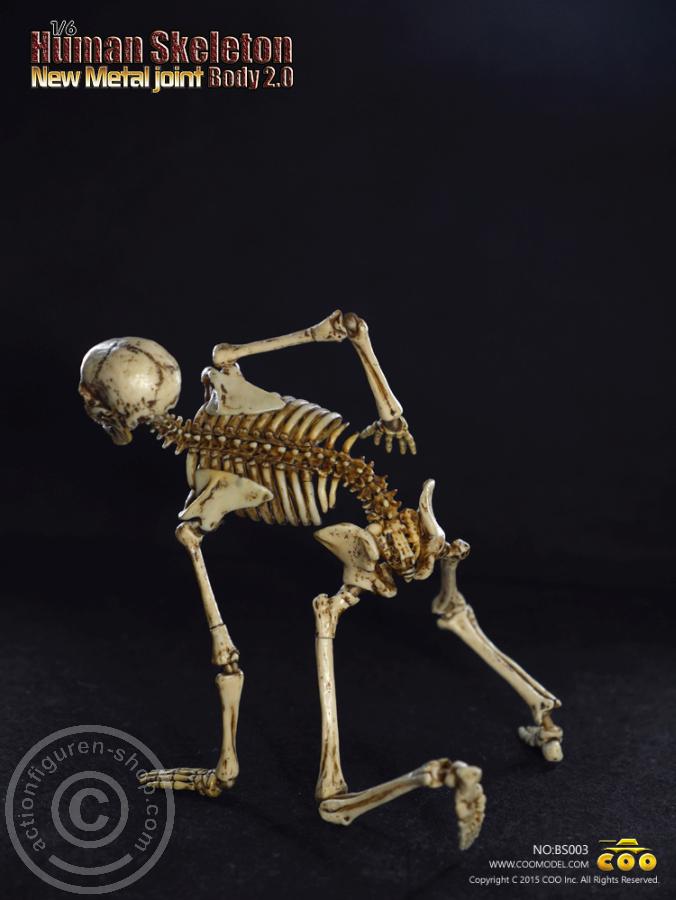 www.actionfiguren-shop.com | The Skeleton 2.0 | Online 1:6 Figuren ...
