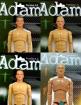 Adam 1.0 - 1.3 - 4 Figuren