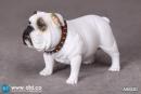 British Bulldog - Version D