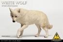 Wolf Companion - white Wolf