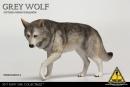 Wolf Companion - grey Wolf