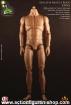 Athletik Muscle Body - Caucasian Headless
