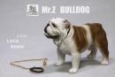 British Bulldog - Version 5