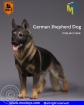 German Shepherd Dog - B