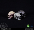 Decoration Skull Set - 3 pcs.