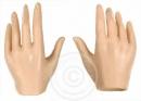 Hände (Typ10) - Pale