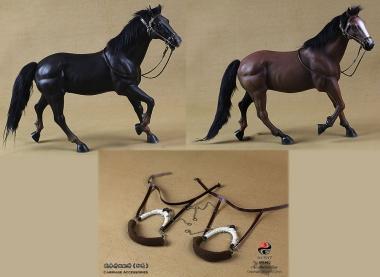 2 Pferde für den Chinesischen Streitwagen