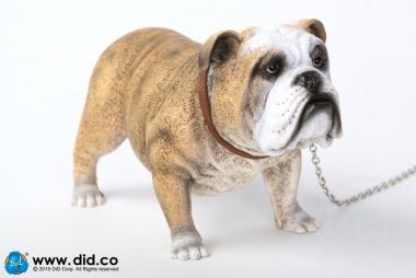 British Bulldog - Version A