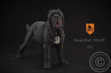 Neapolitan Mastiff - black
