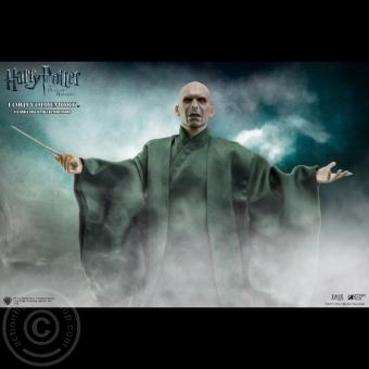Lord Voldemort - Harry Potter und die Heiligtümer des Todes