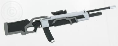 Gewehr mit ZF und Magazin