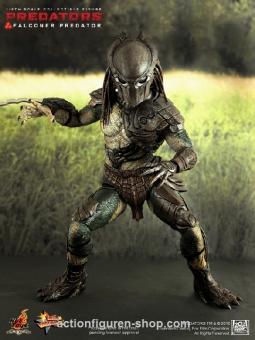 Predators - Falconer
