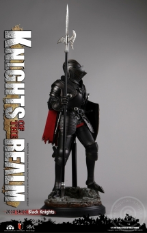 Black Knight - Knights of the Realm - SHCC Exclusive