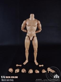 Male Body 2.0 - Muscular - 25cm