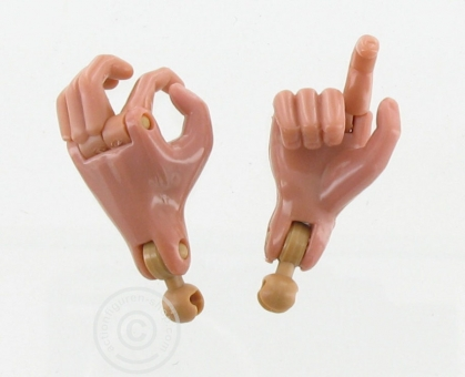 1 Pair of Hands - DID Body 1. Generation