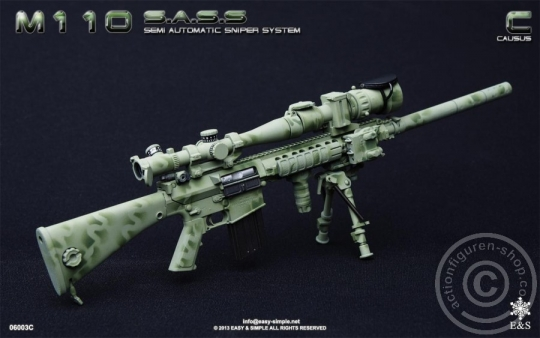 M110 Semi Automatic Sniper System - C