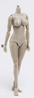 Female Body - large Bust - Flesh Caucasian (B)