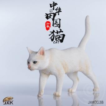 Cat - in 1:6 scale