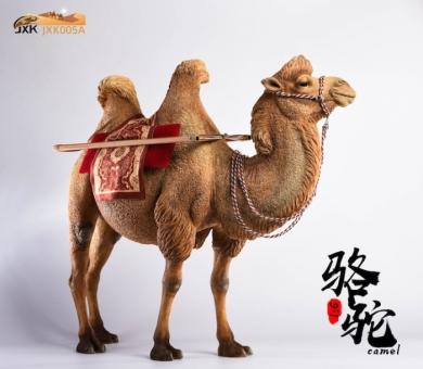 Camelus - Color A