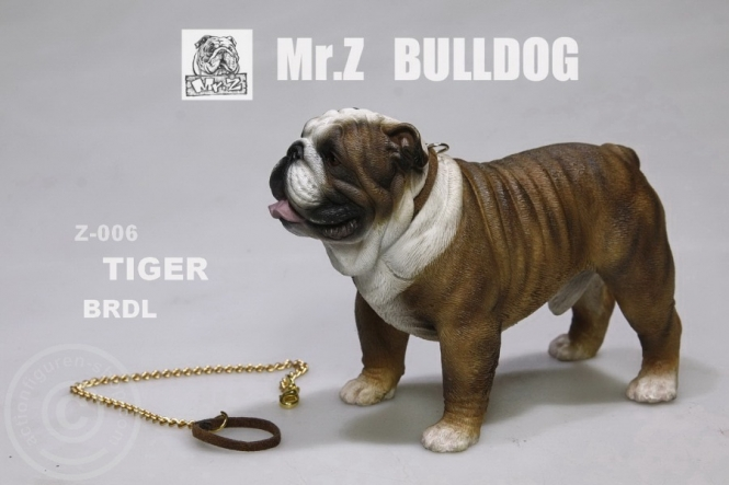 British Bulldog - Version 6