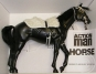 Pferd, schwarz, stehend