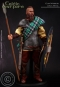 Celtic Warfare - Clan Warrior