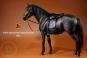 Pferd - schwarz