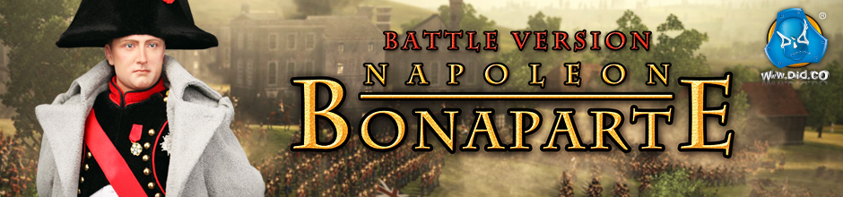 Banner Napoleon Battle Version
