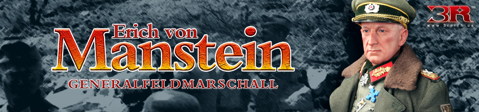 Banner Manstein